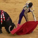 José Tomàs, un torero antico
