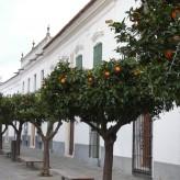 Olivenza, la gallery